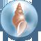 Amphitrite's Shell